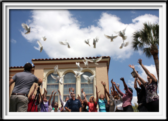 Release the Doves!