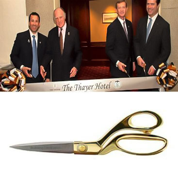 9.5 Inch Gold or Chrome Handle Scissors