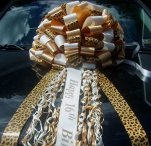 Cheetah Print Giant Car Bows