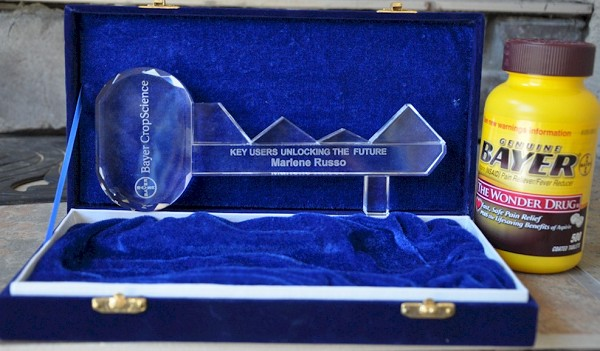 8 Inch Crystal Key Award